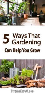 5-Ways-That-Gardening-Can-Help-You-Grow-pin-